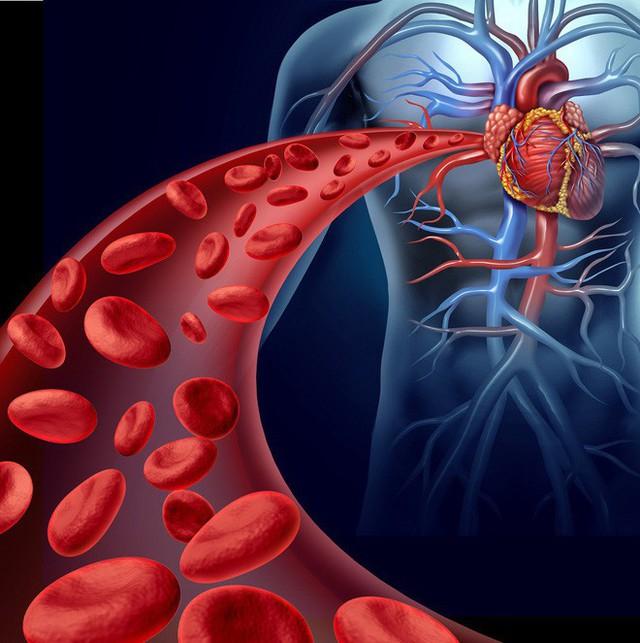 Nam giới sau tuổi 45 phải đặc biệt cảnh giác với 3 căn bệnh nguy hiểm: Biết muộn khó chữa - Ảnh 2.