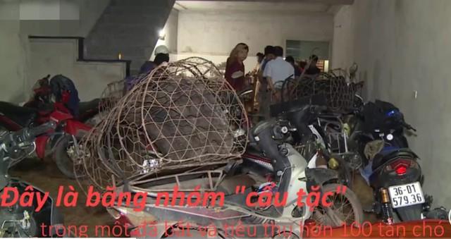 Hành trình triệt phá băng nhóm trộm chó lớn nhất xứ Thanh, lộ diện căn hầm bí mật dưới lòng đất - Ảnh 2.