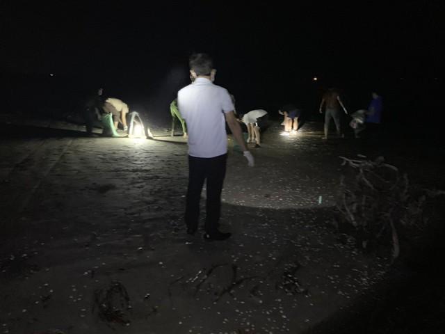 Hàng tấn cá chết trắng trôi dạt dọc bờ biển Hà Tĩnh - Ảnh 2.