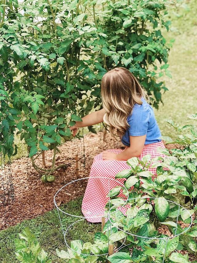 Cô giáo trẻ xinh đẹp yêu làm vườn, thích nấu ăn và giấc mơ được trồng rau quả sạch suốt cuộc đời - Ảnh 13.