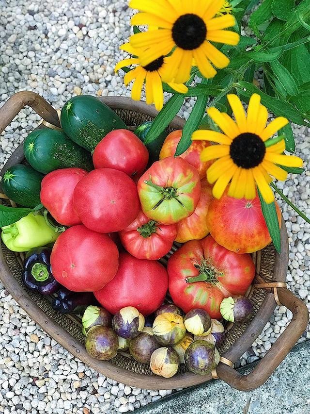 Cô giáo trẻ xinh đẹp yêu làm vườn, thích nấu ăn và giấc mơ được trồng rau quả sạch suốt cuộc đời - Ảnh 21.