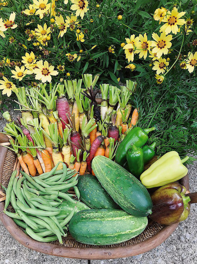 Cô giáo trẻ xinh đẹp yêu làm vườn, thích nấu ăn và giấc mơ được trồng rau quả sạch suốt cuộc đời - Ảnh 6.