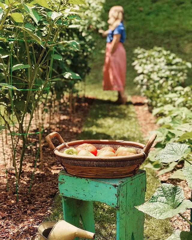 Cô giáo trẻ xinh đẹp yêu làm vườn, thích nấu ăn và giấc mơ được trồng rau quả sạch suốt cuộc đời - Ảnh 10.