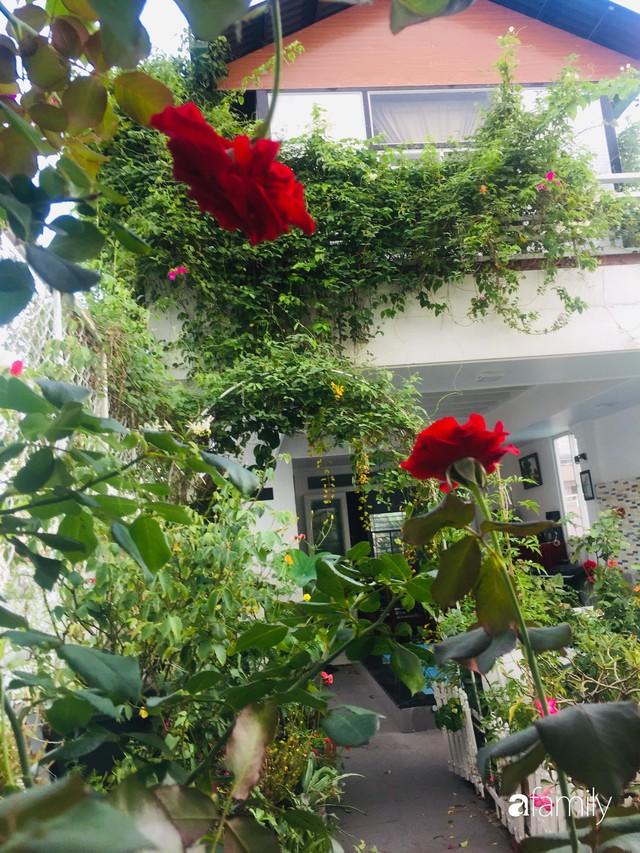 Khu vườn 30m² muôn hoa đua nở trên sân thượng của mẹ đảm thích mộng mơ ở TP. HCM - Ảnh 17.