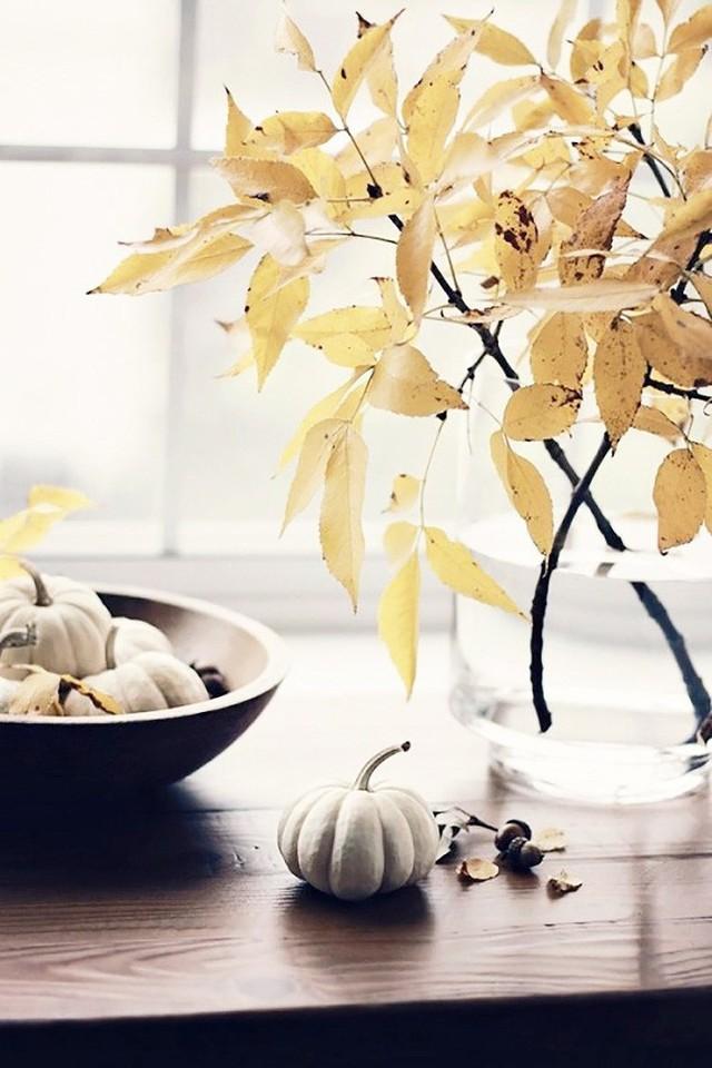 Không cần phải tốn tiền bạc hay công sức, với một chút sáng tạo là bạn có thể đem mùa thu đẹp dịu dàng vào nhà - Ảnh 7.