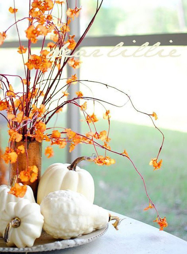 Không cần phải tốn tiền bạc hay công sức, với một chút sáng tạo là bạn có thể đem mùa thu đẹp dịu dàng vào nhà - Ảnh 9.