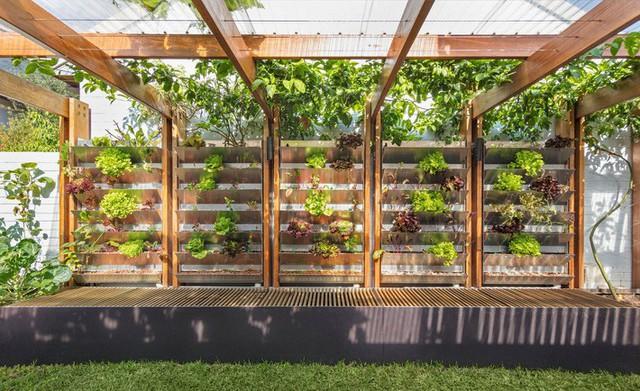 Ngôi nhà phố được thiết kế để giảm thiểu chi phí sinh hoạt, còn trồng rau nuôi gà ngay trong nhà nhưng vẫn sạch sẽ - Ảnh 13.