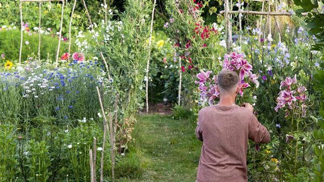 Khu vườn rực rỡ của cặp vợ chồng tự trồng hoa cho đám cưới - Ảnh 3.
