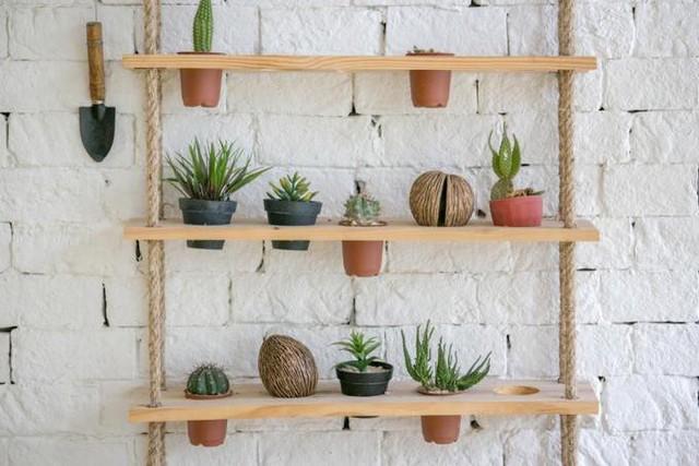 15 cách làm vườn treo trong nhà xinh yêu - Ảnh 2.