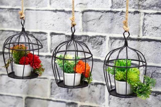 15 cách làm vườn treo trong nhà xinh yêu - Ảnh 3.