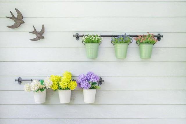 15 cách làm vườn treo trong nhà xinh yêu - Ảnh 7.