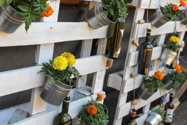 15 cách làm vườn treo trong nhà xinh yêu - Ảnh 8.