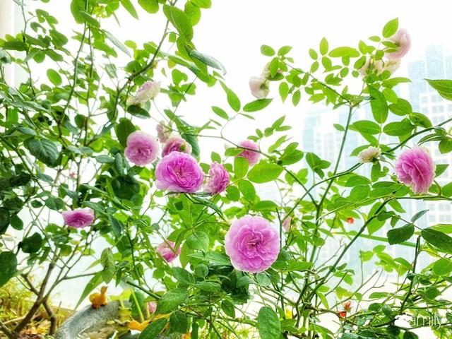 Ngày đầu năm ghé thăm những góc nhỏ dịu dàng sắc hoa trong căn nhà ấm cúng của bà mẹ trẻ Hà Nội - Ảnh 30.