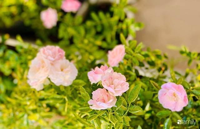 Ngày đầu năm ghé thăm những góc nhỏ dịu dàng sắc hoa trong căn nhà ấm cúng của bà mẹ trẻ Hà Nội - Ảnh 31.