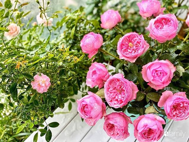 Ngày đầu năm ghé thăm những góc nhỏ dịu dàng sắc hoa trong căn nhà ấm cúng của bà mẹ trẻ Hà Nội - Ảnh 5.