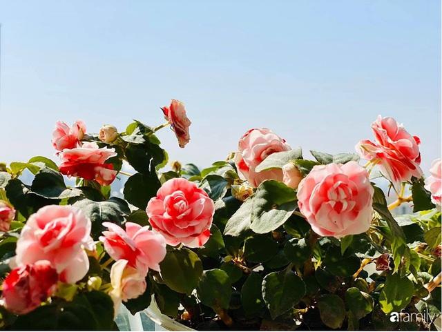 Ngày đầu năm ghé thăm những góc nhỏ dịu dàng sắc hoa trong căn nhà ấm cúng của bà mẹ trẻ Hà Nội - Ảnh 34.