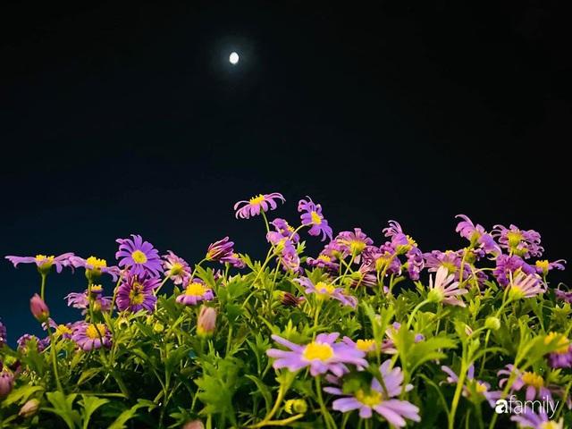 Ngày đầu năm ghé thăm những góc nhỏ dịu dàng sắc hoa trong căn nhà ấm cúng của bà mẹ trẻ Hà Nội - Ảnh 35.