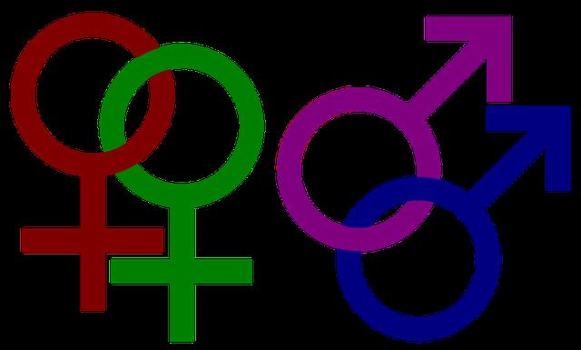 """Đồng tính """"giả"""" - cần can thiệp kịp thời - Ảnh 1."""