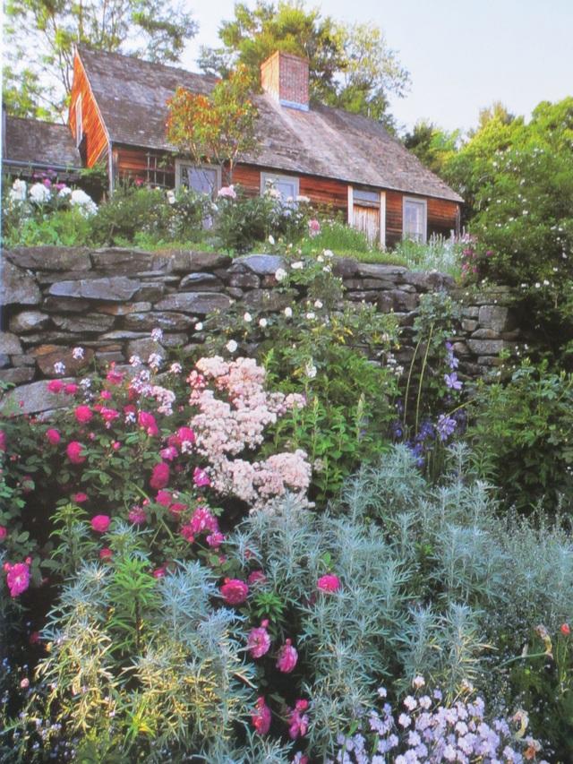 Cuộc sống an yên của cụ bà 92 tuổi bên khu vườn chính mình tự tay trồng hoa, rau quả ở vùng thôn quê - Ảnh 12.