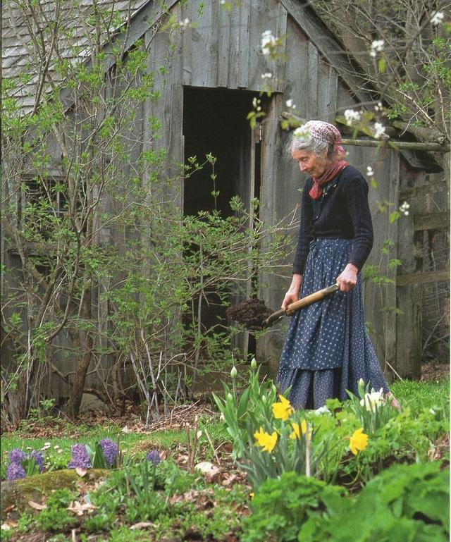 Cuộc sống an yên của cụ bà 92 tuổi bên khu vườn chính mình tự tay trồng hoa, rau quả ở vùng thôn quê - Ảnh 18.