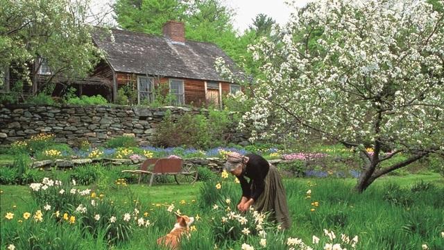 Cuộc sống an yên của cụ bà 92 tuổi bên khu vườn chính mình tự tay trồng hoa, rau quả ở vùng thôn quê - Ảnh 20.