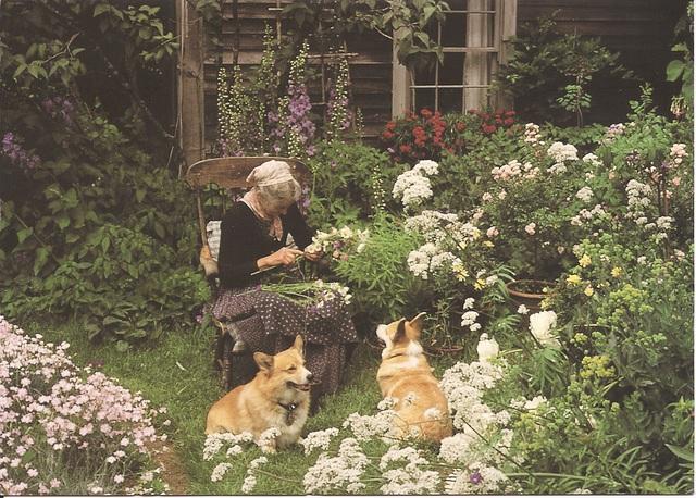 Cuộc sống an yên của cụ bà 92 tuổi bên khu vườn chính mình tự tay trồng hoa, rau quả ở vùng thôn quê - Ảnh 9.