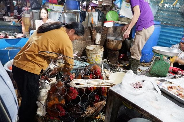 Dạo một vòng chợ Hà Nội: Giá gà cúng đa dạng, loại đắt và đẹp nhất rơi vào khoảng 300 nghìn đồng/kg - Ảnh 14.