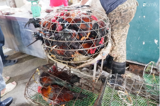 Dạo một vòng chợ Hà Nội: Giá gà cúng đa dạng, loại đắt và đẹp nhất rơi vào khoảng 300 nghìn đồng/kg - Ảnh 15.