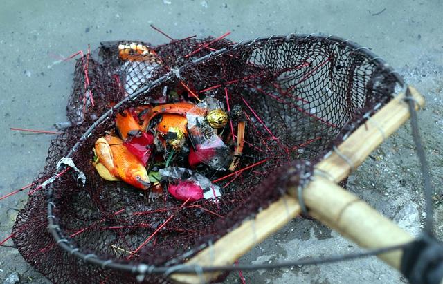 Hà Nội: Cá chép đỏ chết la liệt ở hồ sau khi người dân tiễn Táo quân về trời - Ảnh 3.