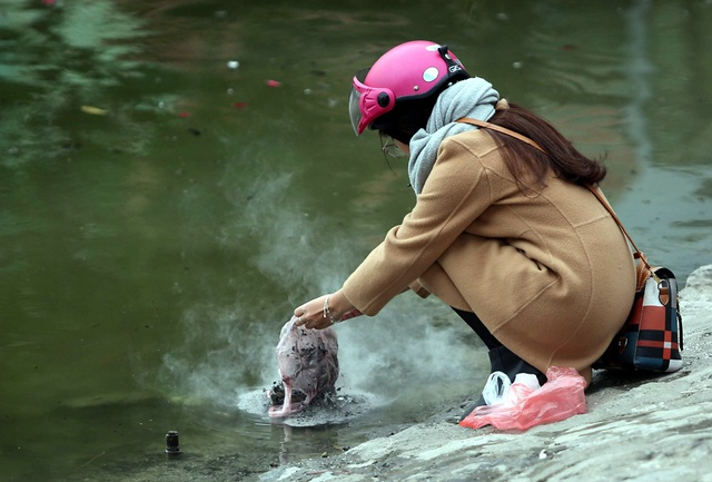 Hà Nội: Cá chép đỏ chết la liệt ở hồ sau khi người dân tiễn Táo quân về trời - Ảnh 8.