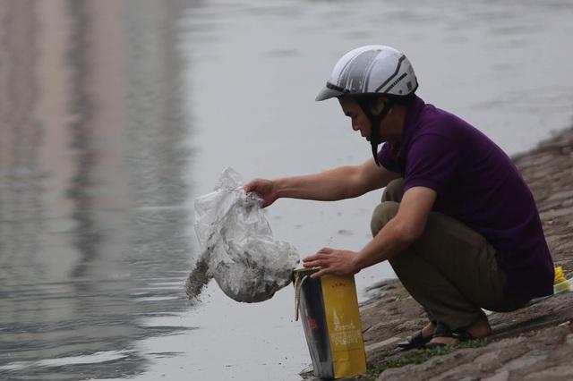 Hà Nội: Cá chép đỏ chết la liệt ở hồ sau khi người dân tiễn Táo quân về trời - Ảnh 9.