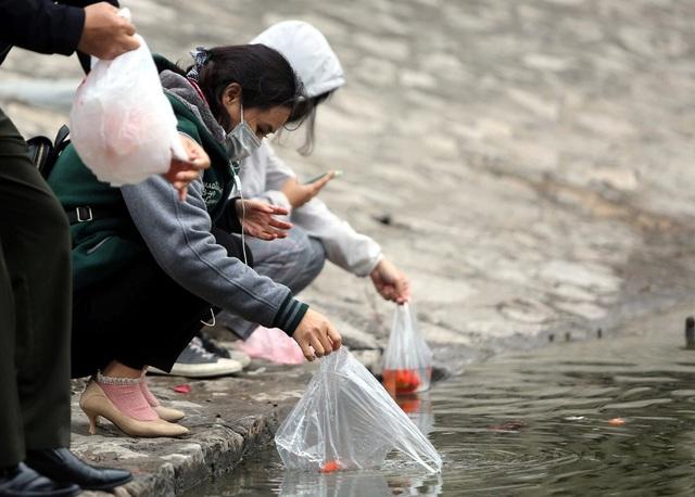 Hà Nội: Cá chép đỏ chết la liệt ở hồ sau khi người dân tiễn Táo quân về trời - Ảnh 12.
