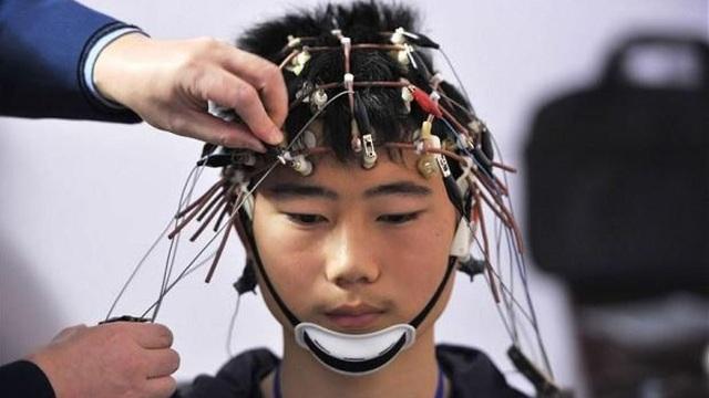 Tìm ra cách nhập trực tiếp kiến thức vào não bộ - Ảnh 1.