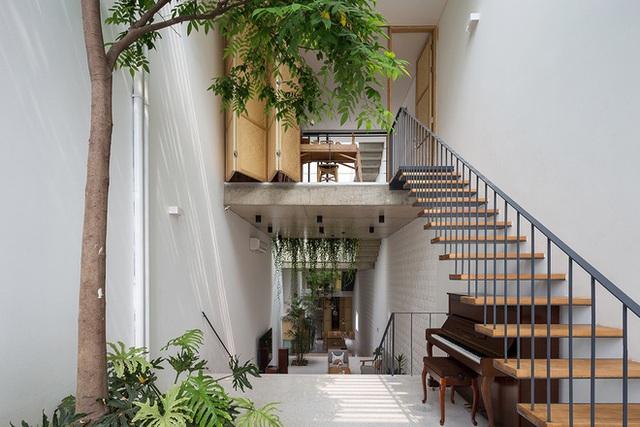 Ngôi nhà với thiết kế 2 lớp mặt tiền chống khói bụi ở Hà Nội - Ảnh 5.