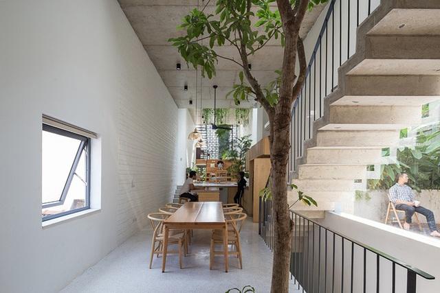 Ngôi nhà với thiết kế 2 lớp mặt tiền chống khói bụi ở Hà Nội - Ảnh 7.