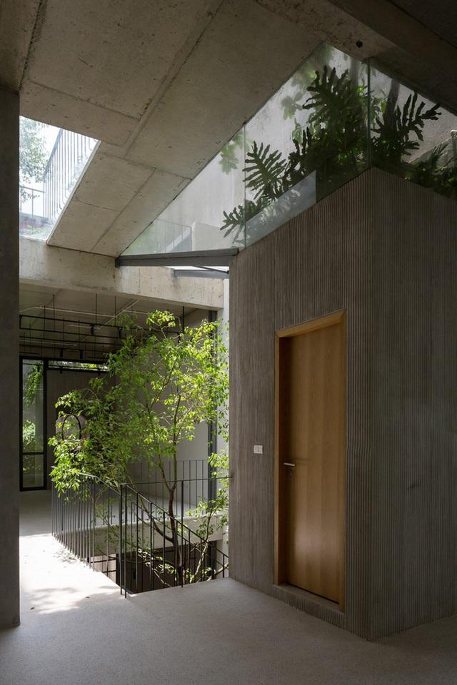 Ngôi nhà với thiết kế 2 lớp mặt tiền chống khói bụi ở Hà Nội - Ảnh 10.