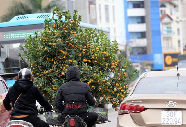 Tranh thủ cuối tuần, người Hà Nội đổ đến chợ hoa Quảng An mua sắm đông nghẹt thở - Ảnh 14.