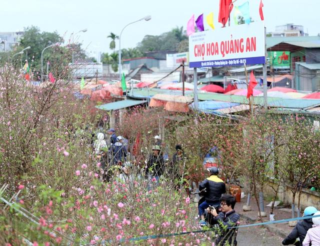 Tranh thủ cuối tuần, người Hà Nội đổ đến chợ hoa Quảng An mua sắm đông nghẹt thở - Ảnh 10.