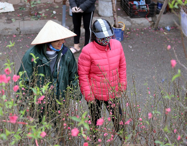 Tranh thủ cuối tuần, người Hà Nội đổ đến chợ hoa Quảng An mua sắm đông nghẹt thở - Ảnh 11.