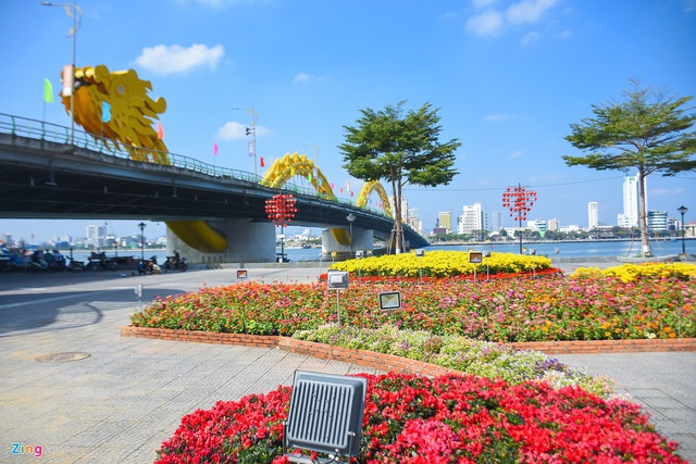 Ngắm đường hoa hơn 6 tỷ ở Đà Nẵng - Ảnh 2.