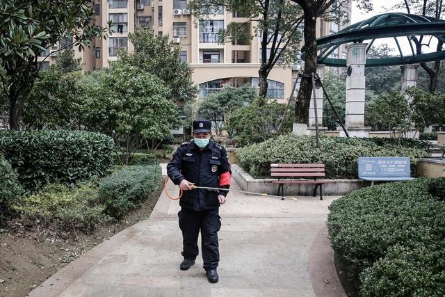 Kỳ nghỉ tết kỳ lạ của người Trung Quốc giữa cơn ám ảnh virus corona - Ảnh 1.