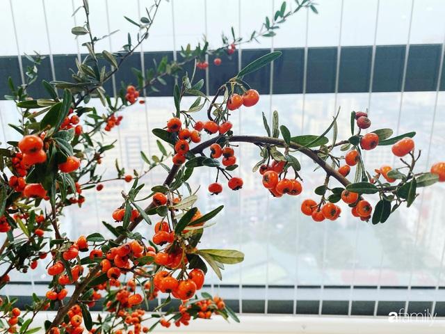 Căn hộ 76,9m² ấm áp với đủ loại hoa và nội thất gỗ ở Mỹ Đình, Hà Nội - Ảnh 23.