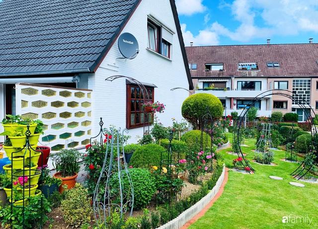 Vườn hoa 500m² đẹp như cổ tích được tạo bởi tình yêu thiên nhiên của cặp vợ chồng dành cả thanh xuân để trồng cây - Ảnh 12.