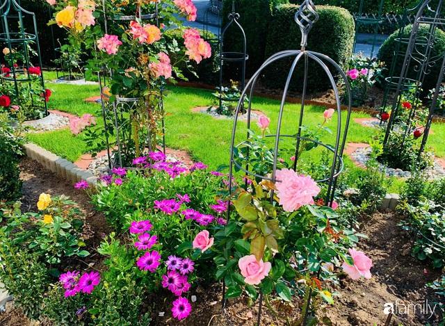 Vườn hoa 500m² đẹp như cổ tích được tạo bởi tình yêu thiên nhiên của cặp vợ chồng dành cả thanh xuân để trồng cây - Ảnh 15.