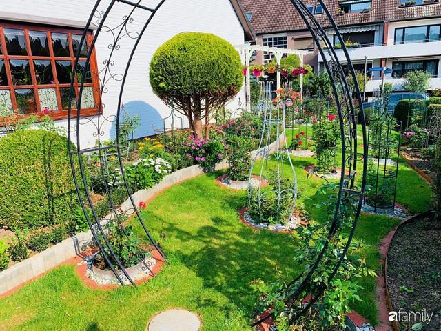 Vườn hoa 500m² đẹp như cổ tích được tạo bởi tình yêu thiên nhiên của cặp vợ chồng dành cả thanh xuân để trồng cây - Ảnh 25.