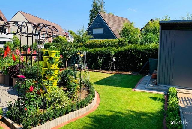 Vườn hoa 500m² đẹp như cổ tích được tạo bởi tình yêu thiên nhiên của cặp vợ chồng dành cả thanh xuân để trồng cây - Ảnh 7.