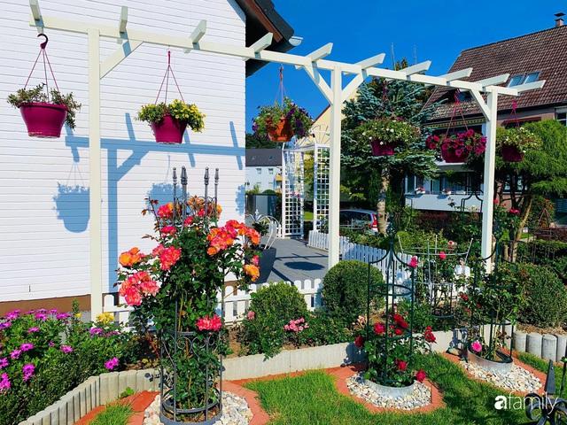 Vườn hoa 500m² đẹp như cổ tích được tạo bởi tình yêu thiên nhiên của cặp vợ chồng dành cả thanh xuân để trồng cây - Ảnh 9.