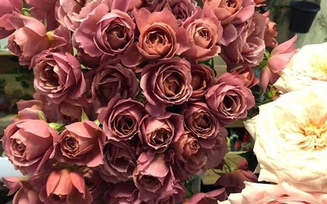 Tặng những loại hoa này đảm bảo vợ, bạn gái cũng phải ngỡ ngàng vì lạ - Ảnh 7.