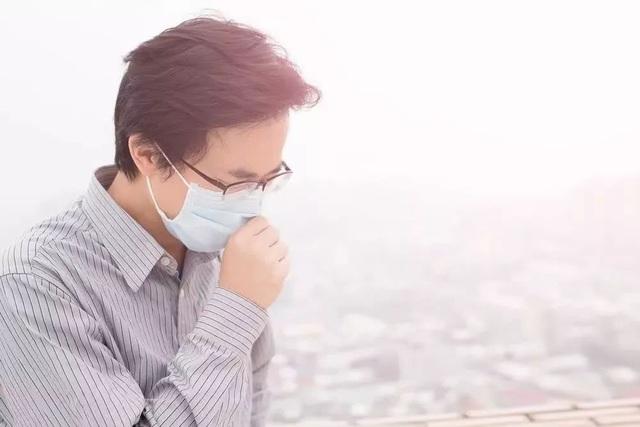 Bật mí loại thảo dược quý sẽ giúp đường hô hấp khỏe mạnh hơn khi thời tiết trở lạnh - Ảnh 1.