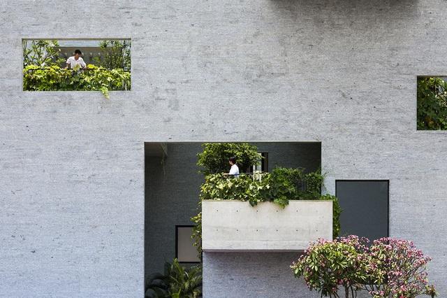 Nhà có nhiều ban công độc đáo, cây xanh mọc tua tủa khắp nơi - Ảnh 3.